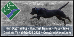 Cross Creek Kennel