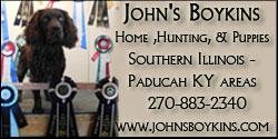 johnsboykins